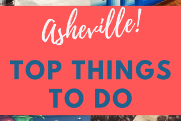 a collage of things to do in asheville including donuts, urban orchard cider, and beer tours