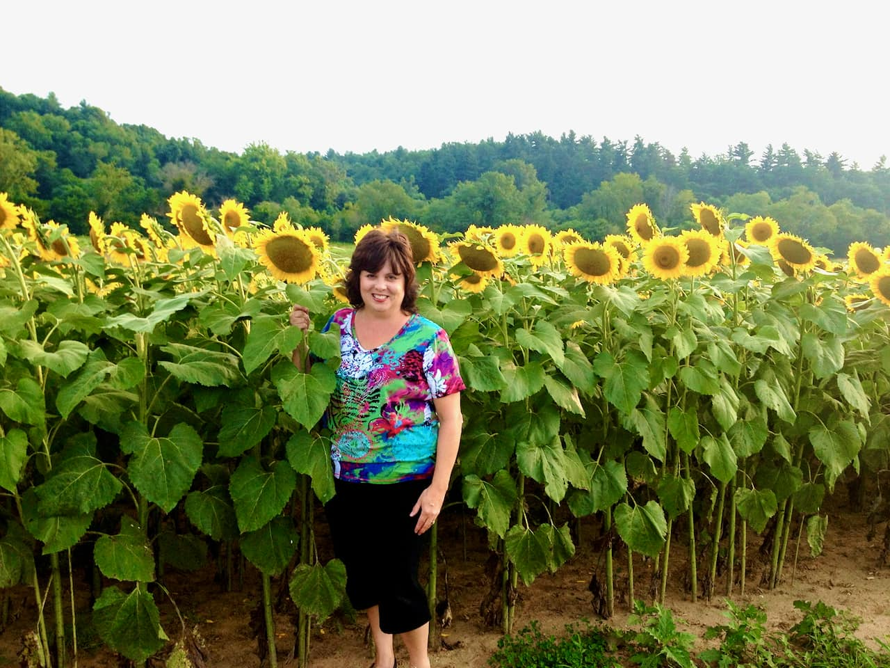 photo of Debi, the author of Quiche My Grits, in a field of sunflowers at Biltmore Estate